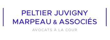 logo-client-peletier-juvigny-ivision